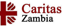 ZAMBIA: Caritas Condemns Illicit Trade in Wildlife and calls for joint effort to care for the environment